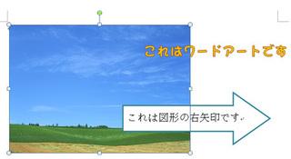 sentaku_2.jpg