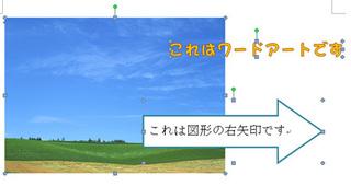 sentaku_4.jpg