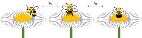 ミツバチの描き方